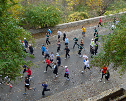 Photo from the water fall along Cliff Drive at the Cliff Hanger Run.