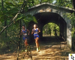 Link to slideshow of the 2011 Bob Timmons Cross Country Classic at Rim Rock Farm.