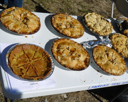 Photos of pies for the Pi Day Run.