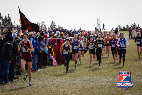 Photo of the women's race at the NAIA National Cross Country Championships at Rim Rock Farm.