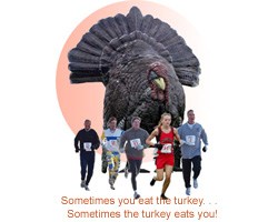 turkey chasing runners